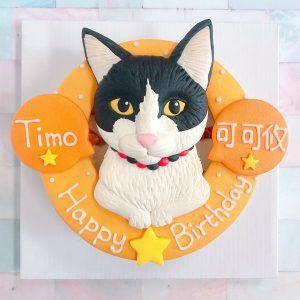 台北寵物生日蛋糕推薦,超可愛化賓士貓客製化造型蛋糕