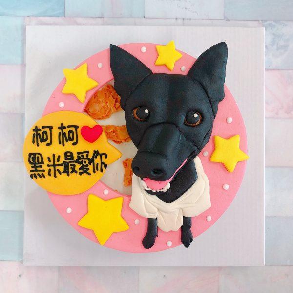 台北客製化寵物蛋糕推薦,超可愛台灣狗狗造型蛋糕