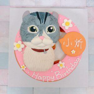 超可愛虎斑貓造型蛋糕,客製化寵物蛋糕宅配推薦