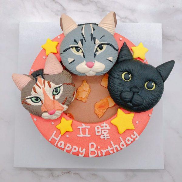 超可愛貓咪生日蛋糕推薦