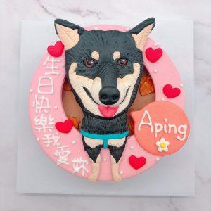 客製化寵物蛋糕宅配推薦