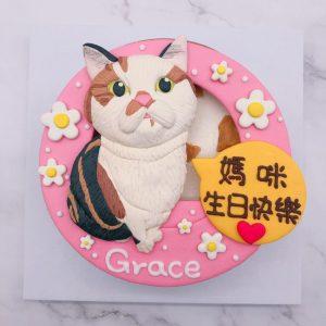 可愛花貓咪生日蛋糕推薦,寵物造型蛋糕宅配訂購