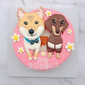 超可愛柴犬造型蛋糕,臘腸狗生日蛋糕宅配