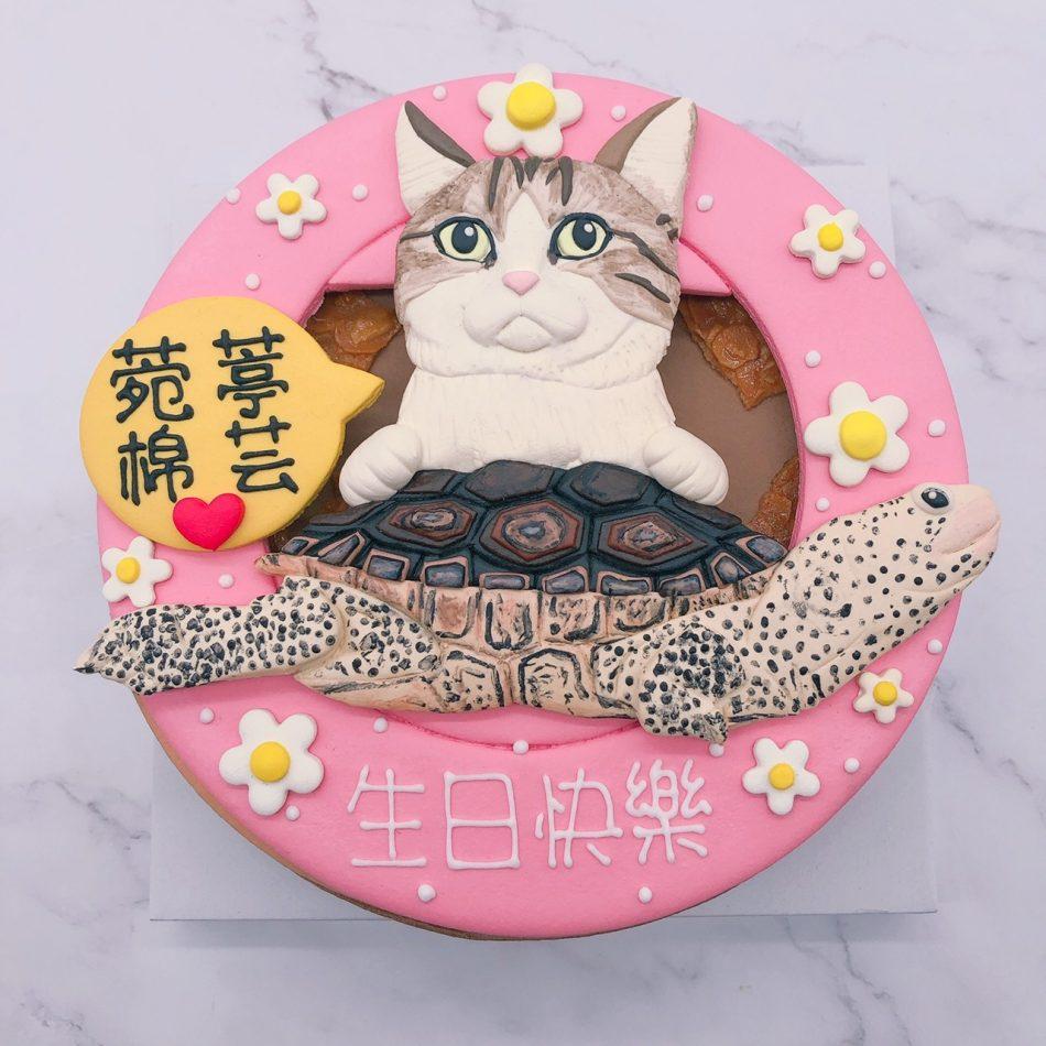 貓咪造型蛋糕推薦,烏龜生日蛋糕宅配訂購