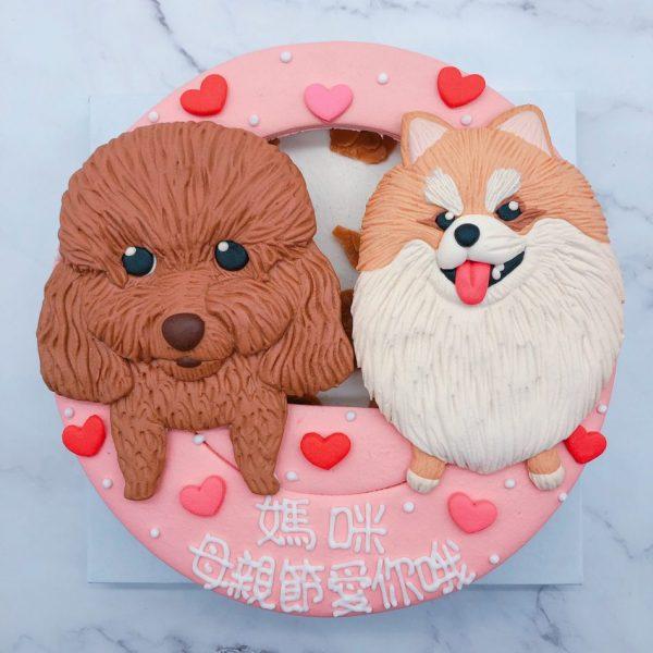 貴賓狗造型蛋糕,博美客製化寵物蛋糕宅配