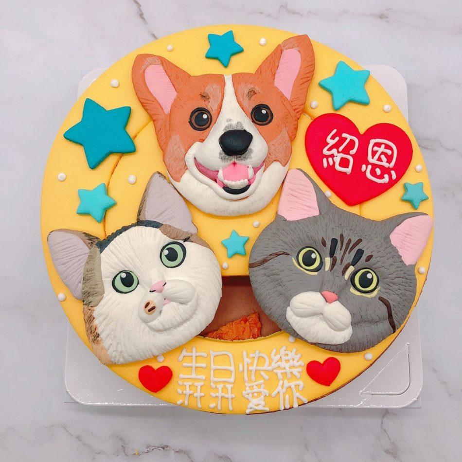貓咪造型蛋糕推薦,柯基生日蛋糕宅配訂購
