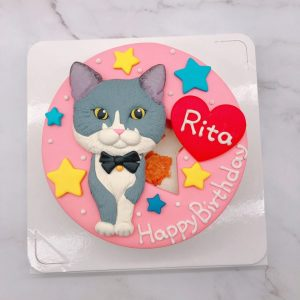貓咪生日蛋糕推薦,寵物造型蛋糕宅配訂購
