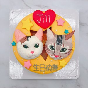 台北貓咪生日蛋糕推薦,寵物造型蛋糕宅配訂購