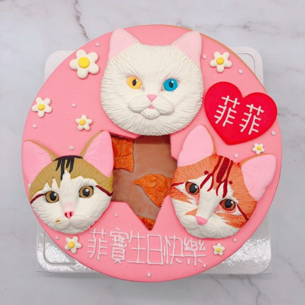 貓咪客製化生日蛋糕推薦,寵物造型蛋糕宅配訂購