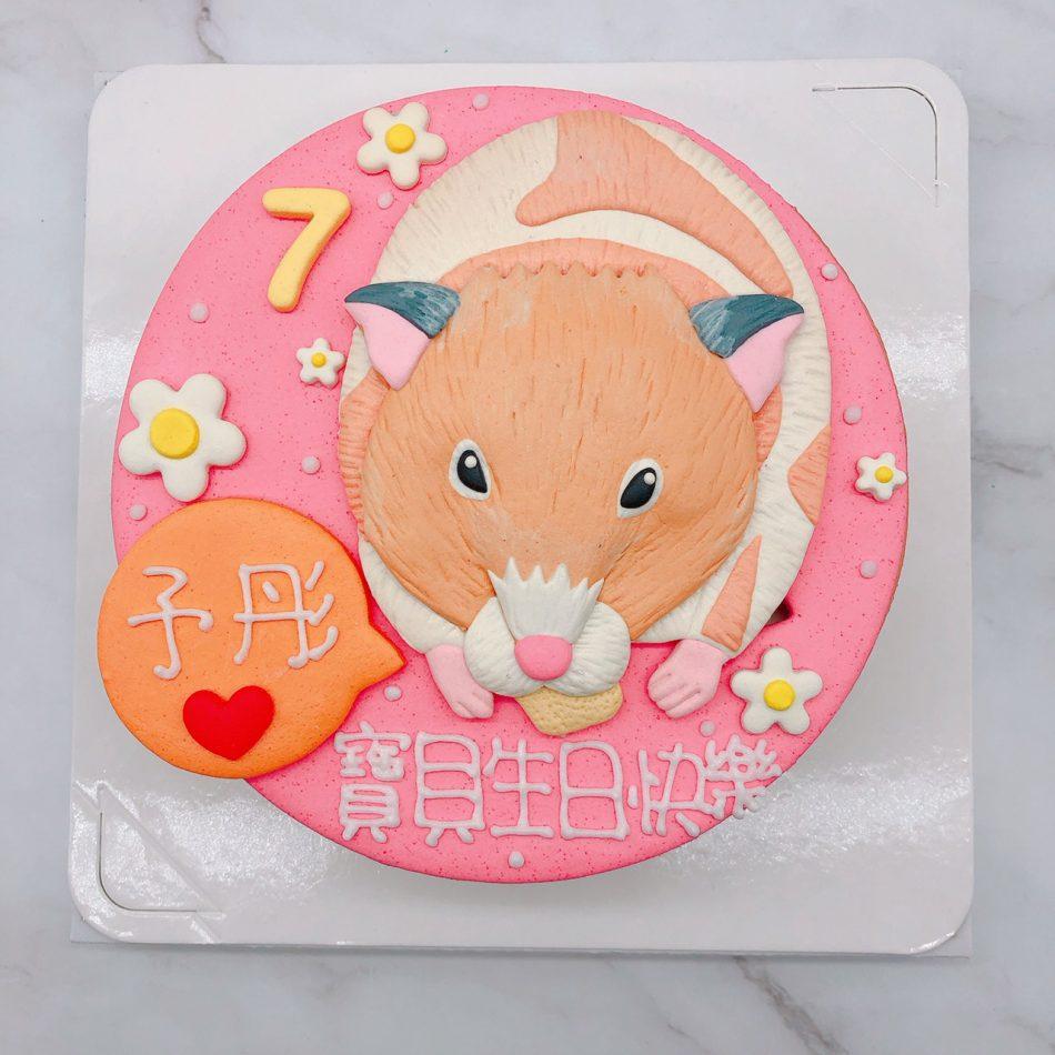 寵物造型蛋糕推薦,老鼠生日蛋糕宅配分享