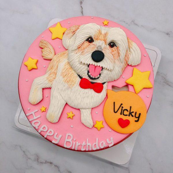 馬爾濟斯生日蛋糕推薦,寵物造型蛋糕宅配