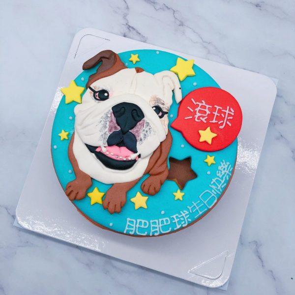 英國鬥牛犬造型蛋糕推薦,台北寵物客製化蛋糕