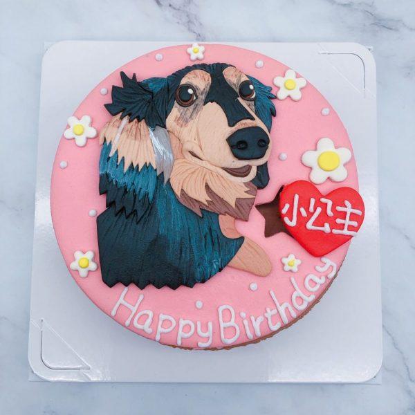 台北寵物造型蛋糕推薦,狗客製化生日蛋糕宅配