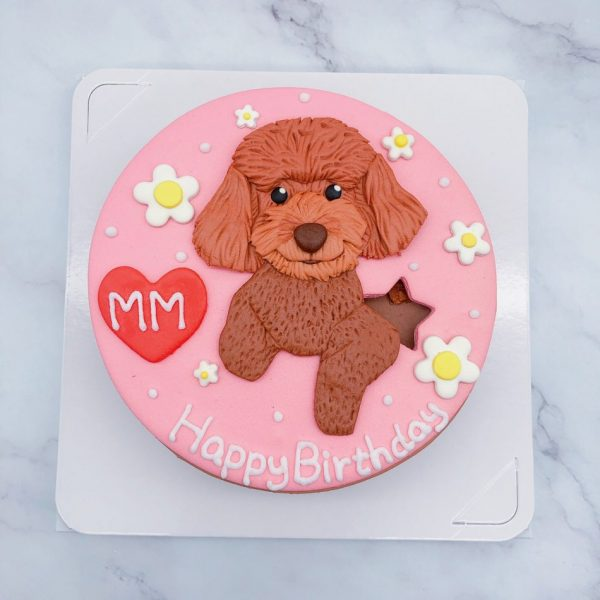 貴賓狗生日蛋糕推薦,台北寵物造型蛋糕宅配分享
